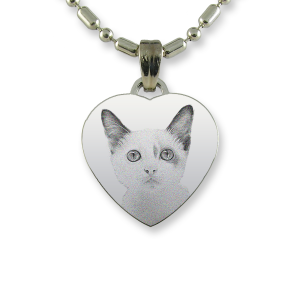 Rhodium Plate Small Heart Cat Keepsake | Photo Pendant UK