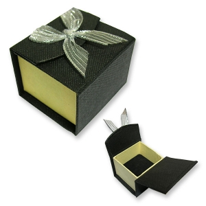 Small Black Box Silver Organza