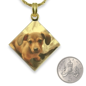 Gold Plated Colour Diamond Drop Photo Pendant with 5p scale