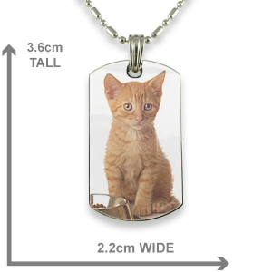 Dimensions Rhodium Plate Small DogTag Colour Photo Pendant