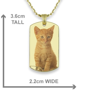 Dimensions Gold Plate Small DogTag Colour Photo Pendant