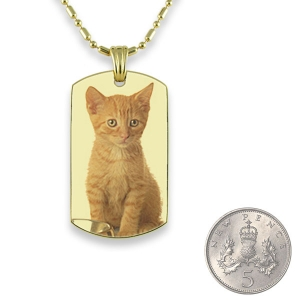 5p Scale Gold Plate Small DogTag Colour Photo Pendant